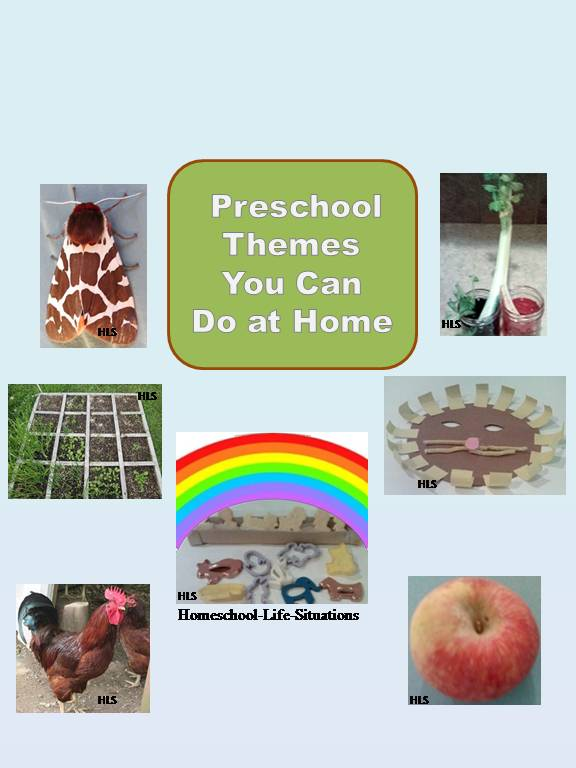 Different ideas for preschool themes